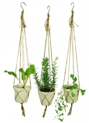 SPICE IT UP hanging pot medium White set/3