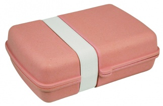 LUNCHTIME! LUNCHBOX PINK
