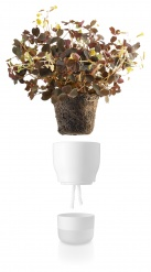 Self watering plant pot  9cm Chalk white