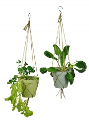 SPICE IT UP hanging pot large Dawn set/2