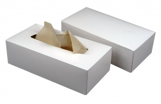 Bamboo-tissues, ecru, box 80pc
