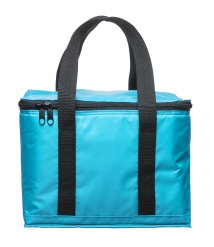 Holiday cooler bag small turkos