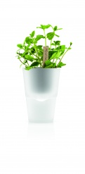 Herb pot 11 cm frosted glass