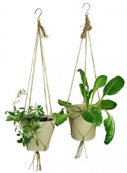 SPICE IT UP hanging pot large White