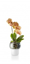 Orchid pot 13cm Frosted