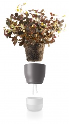Self watering plant pot 9cm Nordic grey