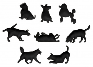 Dog Magnet Set Of 8 Black Xxx