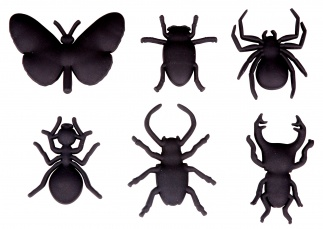 Bug Magnet Set Of 6 Black