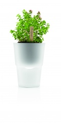 Herb pot 13 cm frosted glass