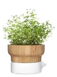 Fix herb pot