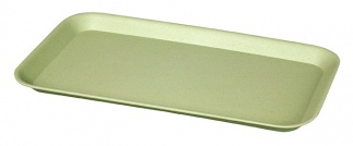 GIV-A-TRAY Willow green