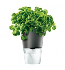 Herb pot 13 cm Dark grey