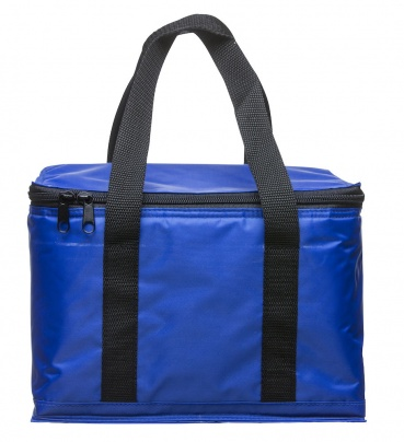 Holiday cooler bag small blue