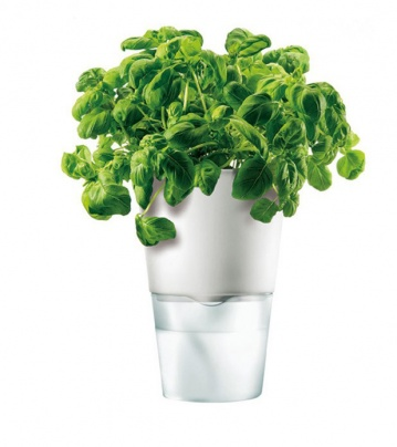 Herb pot 13 cm Chalk white