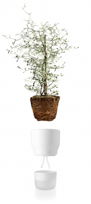 Self watering plant pot 13cm Chalk white